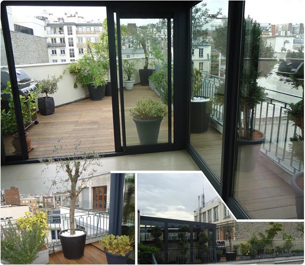 terrasse bois exotique ipe paris toit