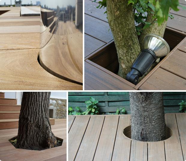 arbre inséré terrasse - réservation - découpe - terrasse bois végétaux