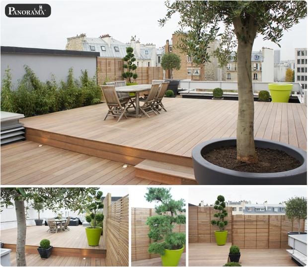 terrasse bois exotique ipe toit tuyau ventillation technique neuilly