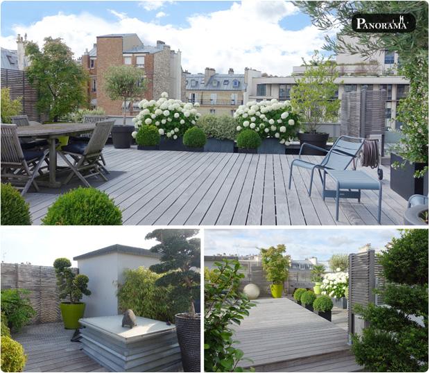 terrasse en ipé à neuilly sur seine végétaux terrasse ilex hortensia panorama terrasses